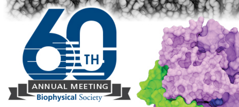 biophysics society meeting Biophysical society offers the top jobs available in biophysical search and apply to open positions or post jobs on biophysical society now.